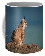 Lynx In Profile On Rock Looking Up Coffee Mug
