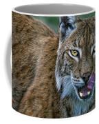 Lynx Licks Lips Coffee Mug