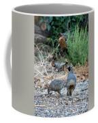 Ma And Pa Quail Coffee Mug