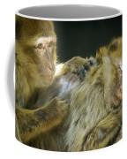Macaques Jerez De La Frontera Spain Coffee Mug