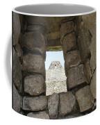 Macchu Picchu 6 Coffee Mug