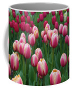 Mackinac Island Tulips 10681 Coffee Mug