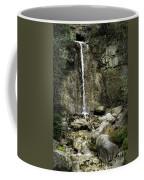 Mackinaw City Park Waterfalls Coffee Mug