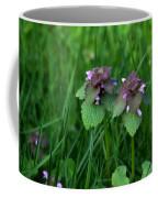 Macro Blooming Clover Coffee Mug