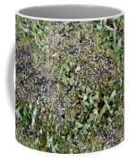 Macro Forest  Coffee Mug