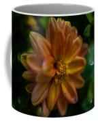 Macro Of Dahlia Flower Coffee Mug
