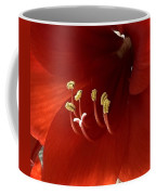 Macro Of Red Amaryllis Flower Coffee Mug