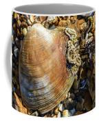 Macro Shell Coffee Mug