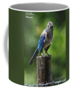 Mad Bird Coffee Mug