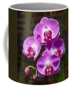 Magenta Orchids Coffee Mug