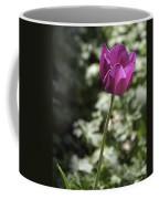 Magenta Tulip Coffee Mug