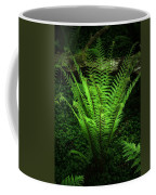 Magic Fern Coffee Mug
