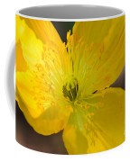 Magic Of The Golden Poppy Coffee Mug