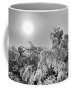 Magic Sunrise Morning  Coffee Mug