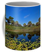Magical Pond With Water Lilies Coffee Mug