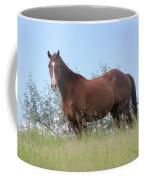 Magnificent Horse Coffee Mug