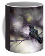 Magnificent Hummingbird Coffee Mug