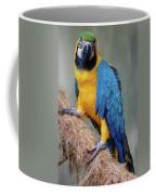 Magnificent Macaw Coffee Mug