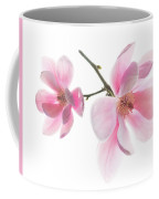Magnolia Is The Harbinger Of Spring. Coffee Mug