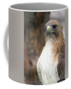 Magnificent Red-tailed Hawk  Coffee Mug