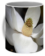 Magnolia 2 Coffee Mug