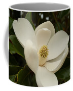 Southern Magnolia Bloom Coffee Mug