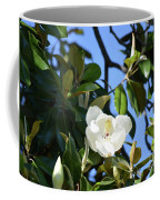 Magnolia Blooming 4 Coffee Mug