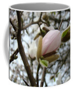 Magnolia Flower Pink White 19 Magnolia Tree Spring Art Coffee Mug