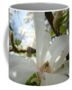 Magnolia Flowers White Magnolia Tree Flower Art Spring Baslee Troutman Coffee Mug