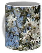 Magnolia Flowers White Magnolia Tree Flowers Art Prints Coffee Mug
