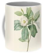 Magnolia Glauca Coffee Mug