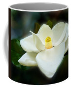 Magnolia In Color Coffee Mug