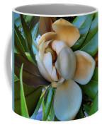 Magnolia In Oxford Coffee Mug