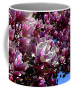 Magnolia In Spring Coffee Mug