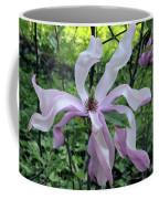 Magnolia Soulangeana Coffee Mug