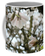 Magnolia Tree Flowers Pink White Magnolia Flowers Spring Artwork Coffee Mug