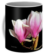 Magnolias In Spring Bloom Coffee Mug