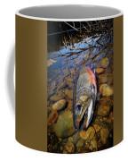 Maine Brookie Coffee Mug