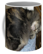 Maine Coon Cat Coffee Mug