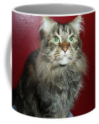Maine Coon Portrait Coffee Mug