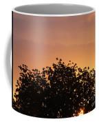 Majestic Dawn Coffee Mug