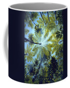 Majestic Treeferns Coffee Mug