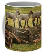 Makeway For Lambs Coffee Mug