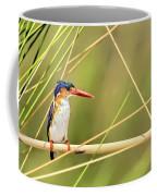 Malachite Kingfisher On Watch Coffee Mug