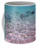 Maldives School Of Tropical Fish Coffee Mug