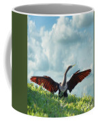 Male American Anhinga  Coffee Mug