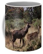 Male And Female Mountain Nyala Coffee Mug