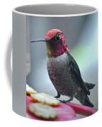 Male Anna's Hummingbird On Feeder Perch Coffee Mug