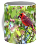 Male Cardinal And His Berry Coffee Mug