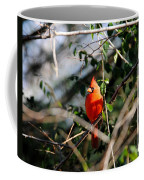 Male Cardinal II Coffee Mug